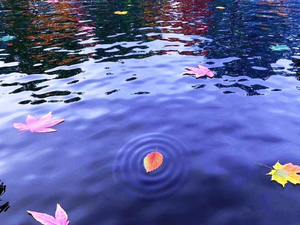 Omeografia dell'acqua