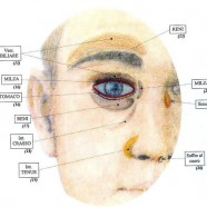 Mappa del volto: emozioni e salute da leggere