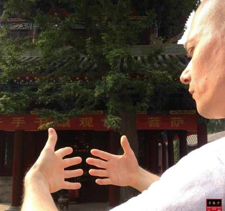 SEMINARIO SHAOLIN QI-GONG 4 – Sutra della Guarigione: DETOX ENERGETICO